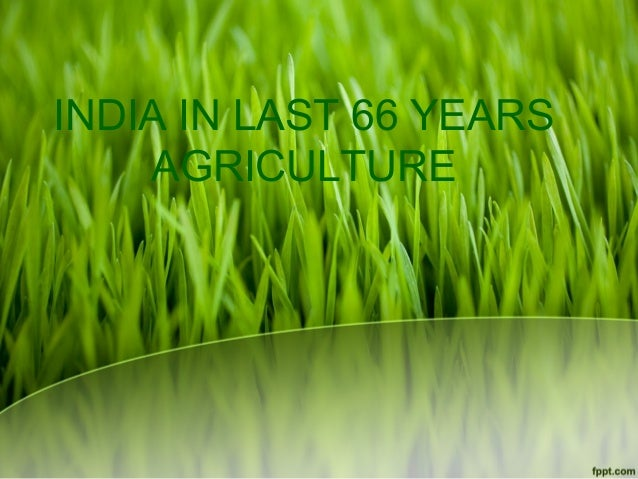 INDIA IN LAST 66 YEARS    AGRICULTURE