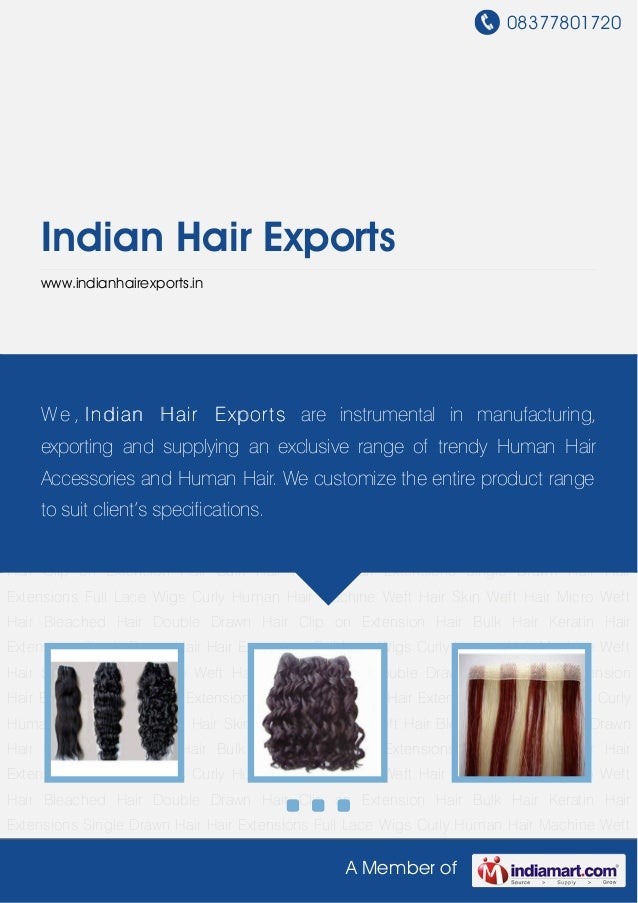 Curly Human Hair by Indian hair exports