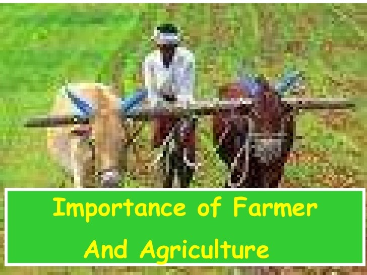 agriculture is the backbone of india There are very few domestic groups having neck to neck competition in globally  competitive crop protection market of india, writes prabodh.