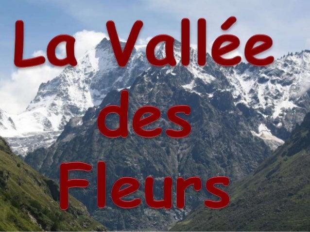 La Vallée des fleurs est une vallée himalayenne de haute altitude extrêmement belle, célébrée depuis un siècle dans la lit...