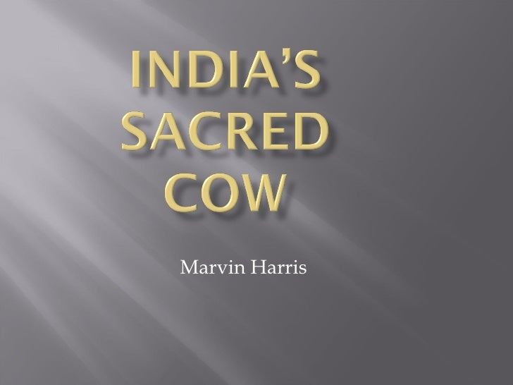marvin harris and the sacred cow Sacred cow in india 18 india's sacred cow marvin harris other people's religious practices and beliefs may often appear to be wasteful they seem to involve a large expenditure of scarce resources on ritual they contain taboos that restrict the use of apparently useful materials.