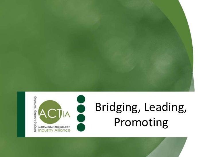 Bridging, Leading,    Promoting