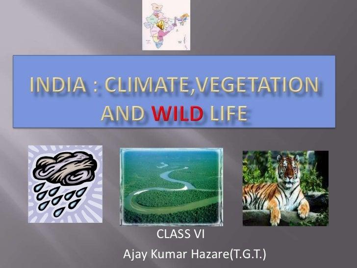 CLASS VIAjay Kumar Hazare(T.G.T.)