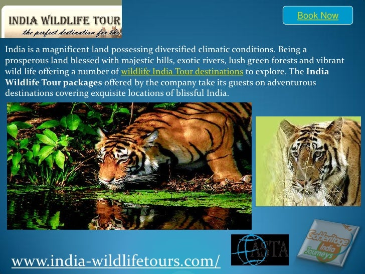 Downlaod India wildlife Tours and India wildlife tour Booking, Review, Wildlife tour and Travel Information Guide