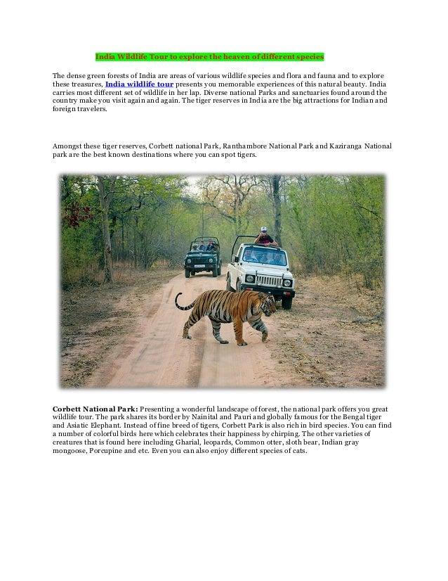 India wildlife tours with Exotic India Journey