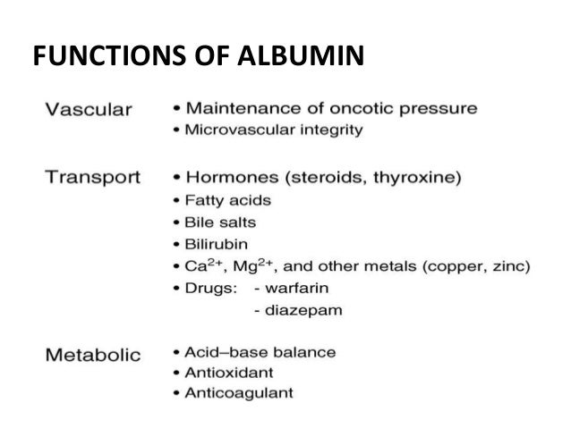 The Functions of Liver in Human Body recommend