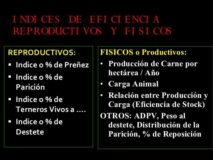 INDICES DE EFICIENCIA REPRODUCTIVOS Y FISICOS <ul><li>REPRODUCTIVOS: </li></ul><ul><li>Indice o % de Preñez </li></ul><ul>...