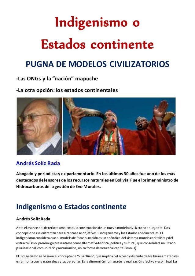 """Indigenismo o Estados continente PUGNA DE MODELOS CIVILIZATORIOS -Las ONGs y la """"nación"""" mapuche -La otra opción: los esta..."""