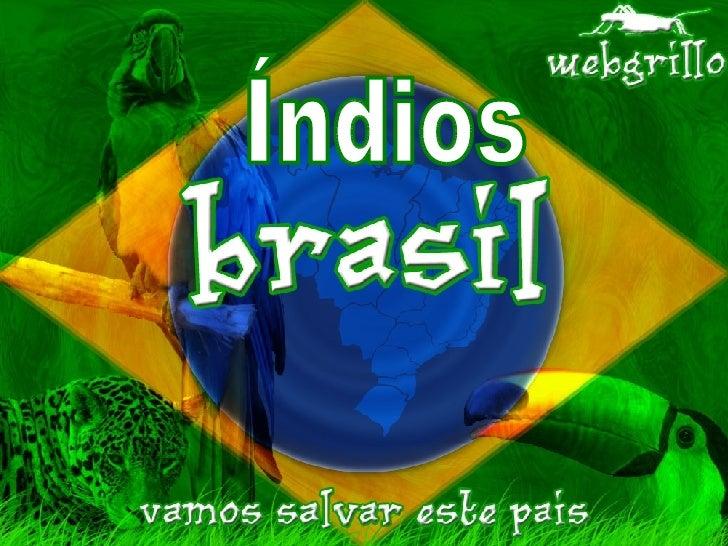 Indios Do Brasil