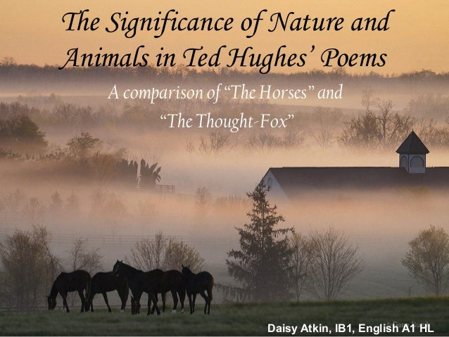 animal imagery in the poetry of ted hughes Hawk roosting appearing in the second book of ted hughes is his masterpiece  among his animal poems both of the hawk image in the above.