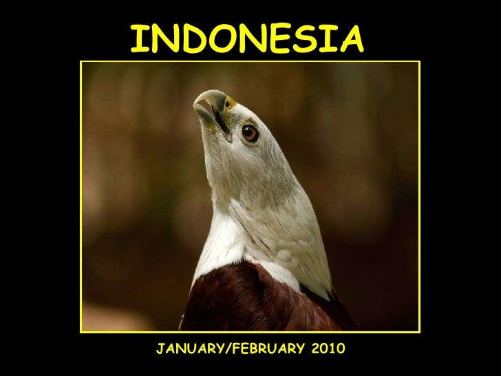 INDONESIA JANUARY/FEBRUARY 2010