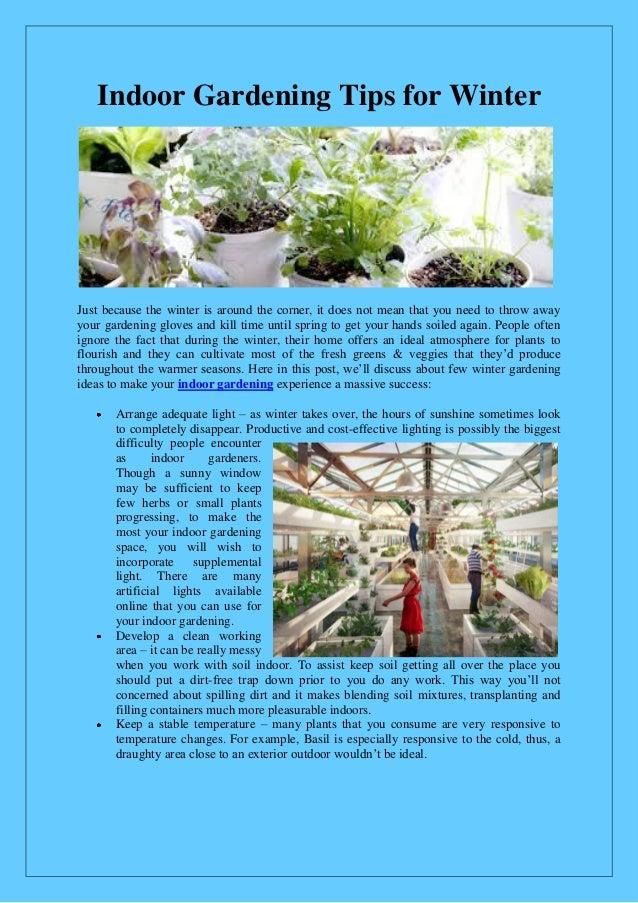Indoor gardening tips for winter for Indoor gardening for dummies