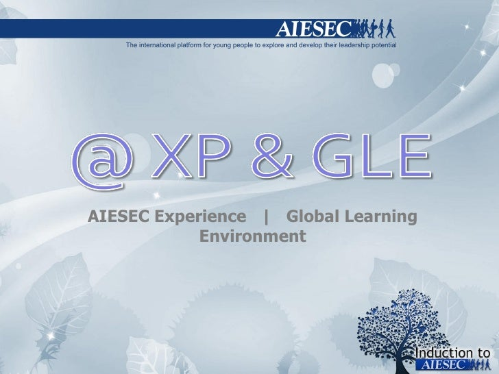 AIESEC Experience     Global Learning Environment