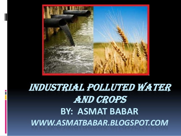 INDUSTRIAL POLLUTED WATER AND CROPS BY: ASMAT BABAR WWW.ASMATBABAR.BLOGSPOT.COM