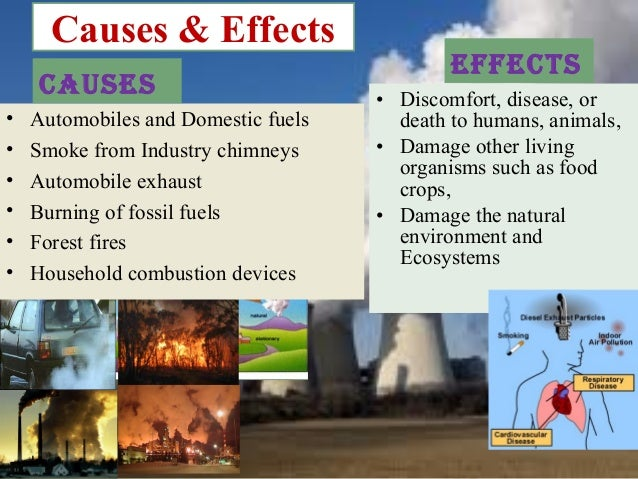 Causes of the industrial revolution essay