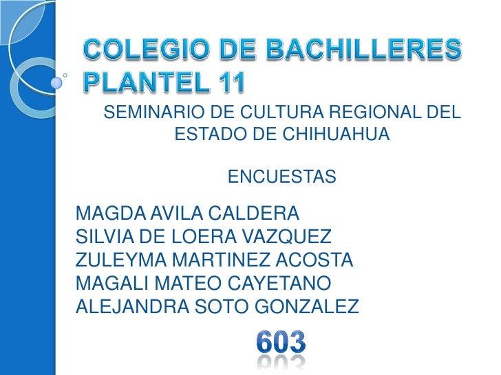 COLEGIO DE BACHILLERES PLANTEL 11<br />SEMINARIO DE CULTURA REGIONAL DEL ESTADO DE CHIHUAHUA<br />ENCUESTAS<br />MAGDA AV...