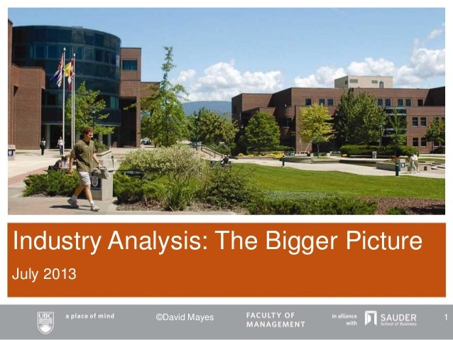 Industry Analysis: The Bigger Picture July 2013 ©David Mayes 1