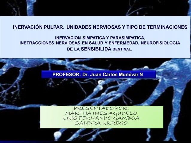 PROFESOR: Dr. Juan Carlos Munévar N