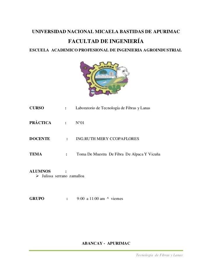 UNIVERSIDAD NACIONAL MICAELA BASTIDAS DE APURIMAC                          FACULTAD DE INGENIERÍAESCUELA ACADEMICO PROFESI...