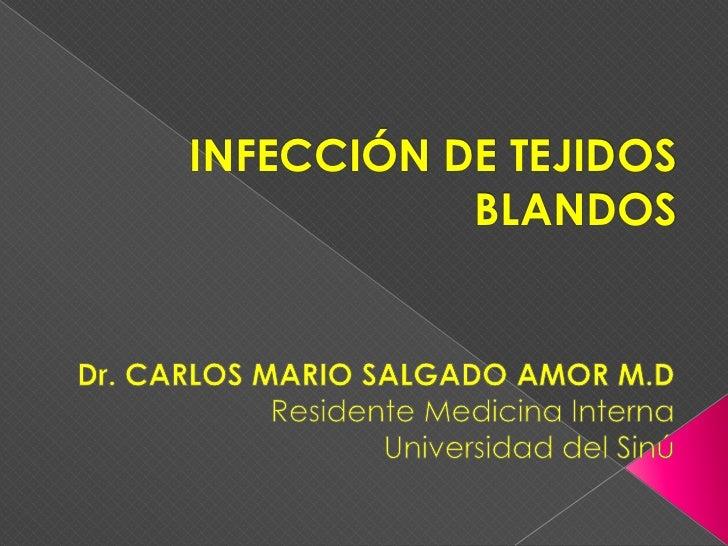 INFECCIÓN DE TEJIDOS BLANDOS<br />Dr. CARLOS MARIO SALGADO AMOR M.D<br />Residente Medicina Interna<br />Universidad del S...