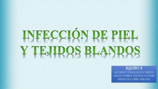 EQUIPO 5 ALVAREZ VILLEGAS LUZ NEIDA MAYO TORRES YELITZA YATZIRI MENDOZA ORBE MELISSA