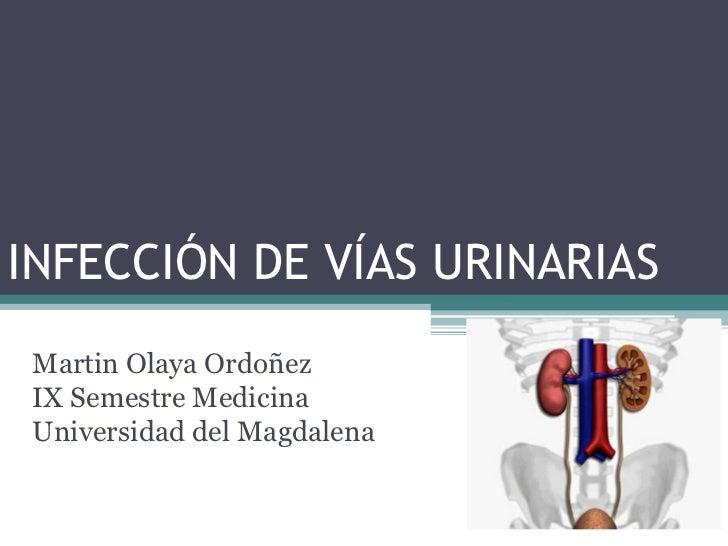 INFECCIÓN DE VÍAS URINARIAS Martin Olaya Ordoñez IX Semestre Medicina Universidad del Magdalena