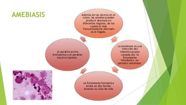 Como se librará de los parásitos en la nasofaringe