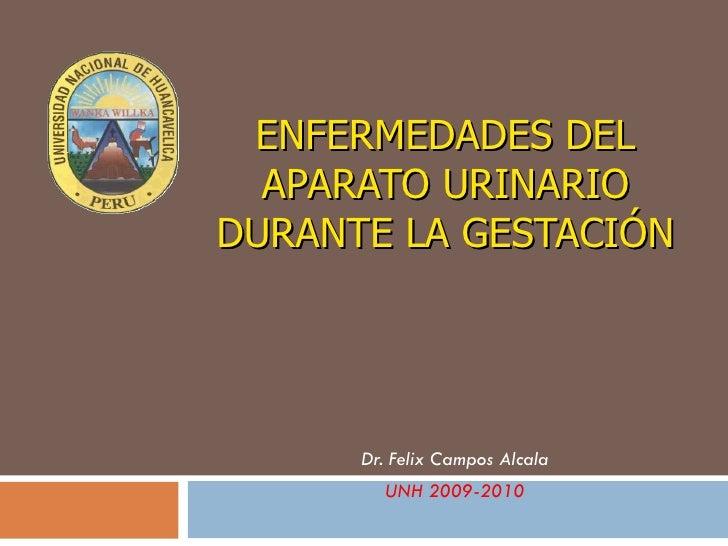 ENFERMEDADES DEL APARATO URINARIO DURANTE LA GESTACIÓN Dr. Felix Campos Alcala UNH 2009-2010