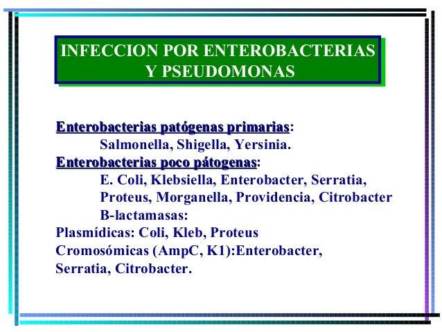 INFECCION POR ENTEROBACTERIAS INFECCION POR ENTEROBACTERIAS         Y PSEUDOMONAS         Y PSEUDOMONASEnterobacterias pat...