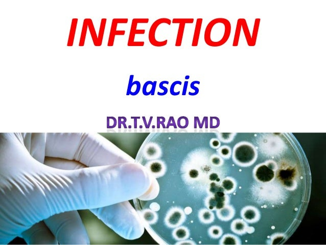 Infection lecture basics