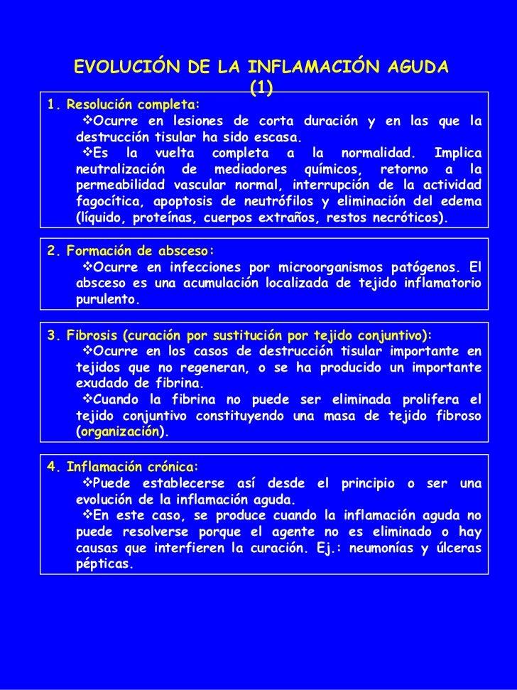 EVOLUCIÓN DE LA INFLAMACIÓN AGUDA (1) <ul><li>1. Resolución completa: </li></ul><ul><ul><li>Ocurre en lesiones de corta du...
