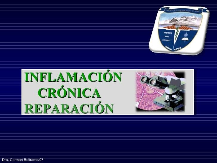 INFLAMACIÓN  CRÓNICA REPARACIÓN Dra. Carmen Beltrame/07