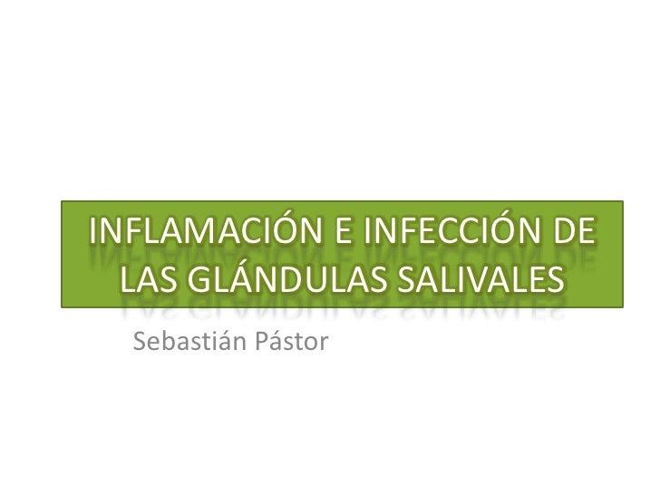 INFLAMACIÓN E INFECCIÓN DE LAS GLÁNDULAS SALIVALES<br />Sebastián Pástor<br />