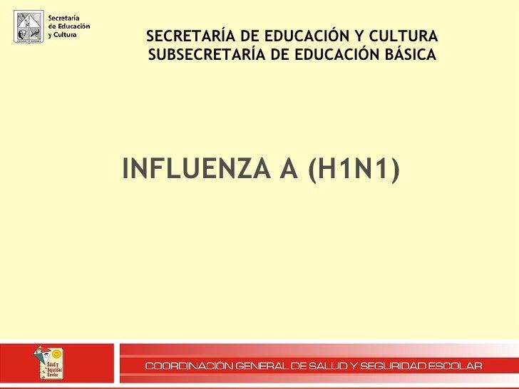 SECRETARÍA DE EDUCACIÓN Y CULTURA SUBSECRETARÍA DE EDUCACIÓN BÁSICA INFLUENZA A (H1N1)