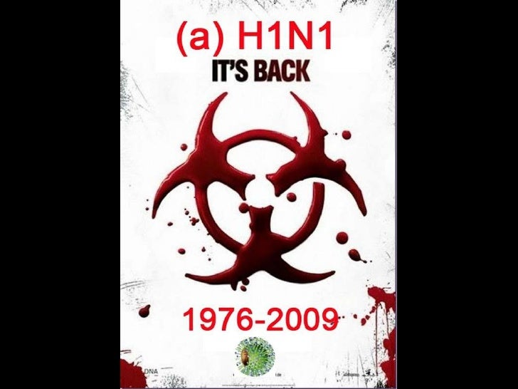 Influenza porcina   Virus AH1N1