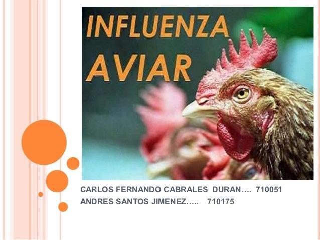 CARLOS FERNANDO CABRALES DURAN…. 710051ANDRES SANTOS JIMENEZ…..   710175