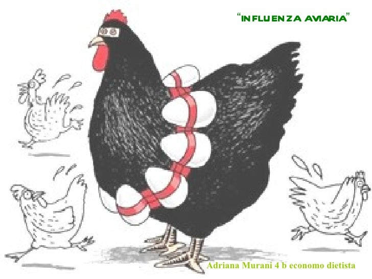 """INFLUENZA AVIARIA""Adriana Murani 4 b economo dietista"