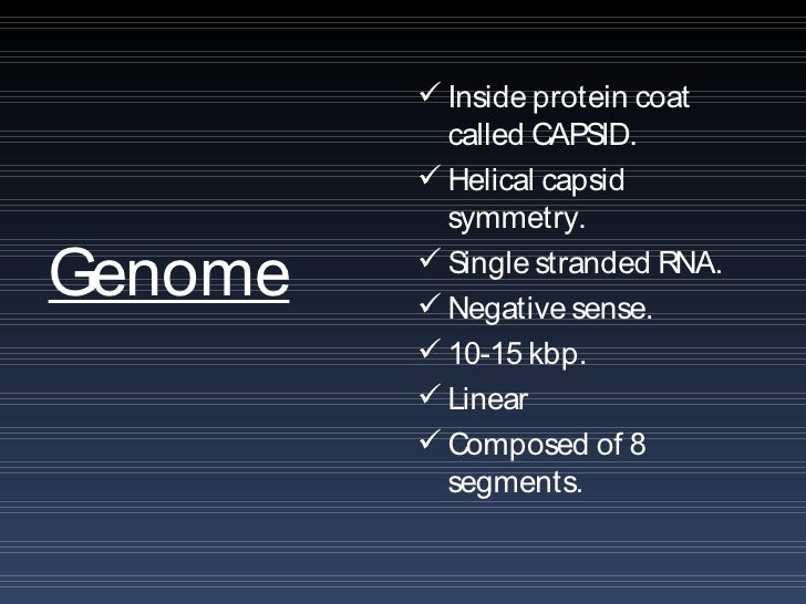 Influenza Protein Coat Inside Protein Coat Called