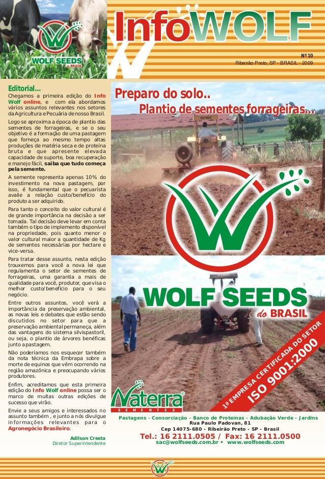 Info Wolf n°10