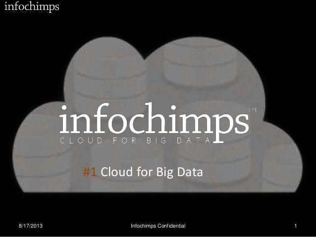 Infochimps TieCon 2013