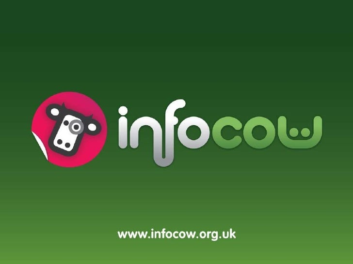 Infocow - The Background