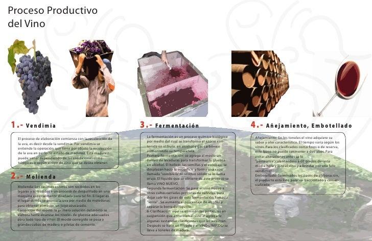 Circuito Productivo Del Vino : Infografía paulinadelgado