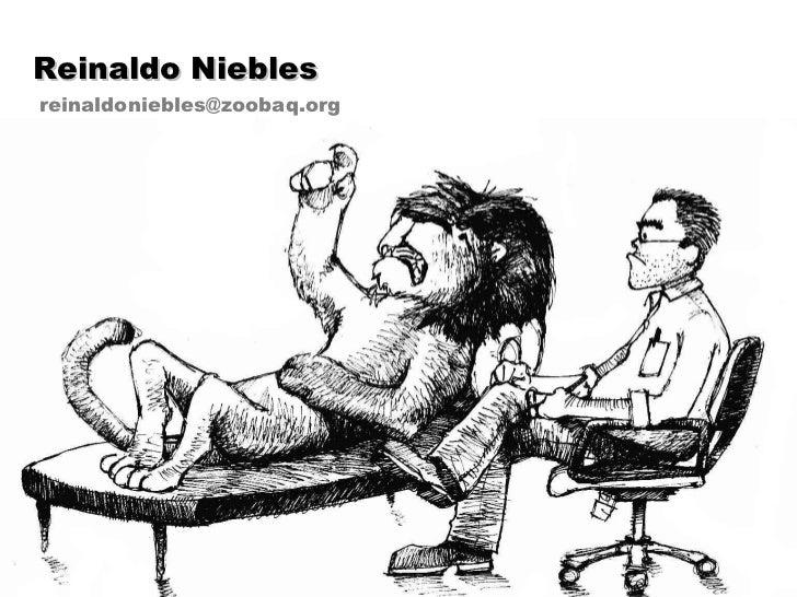 Reinaldo Niebles [email_address]
