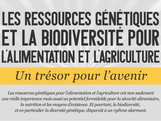 La biodiversité au service de la sécurité alimentaire et de la nutrition: les 30 ans de la Commission des ressources génétiques pour l'alimentation et l'agriculture