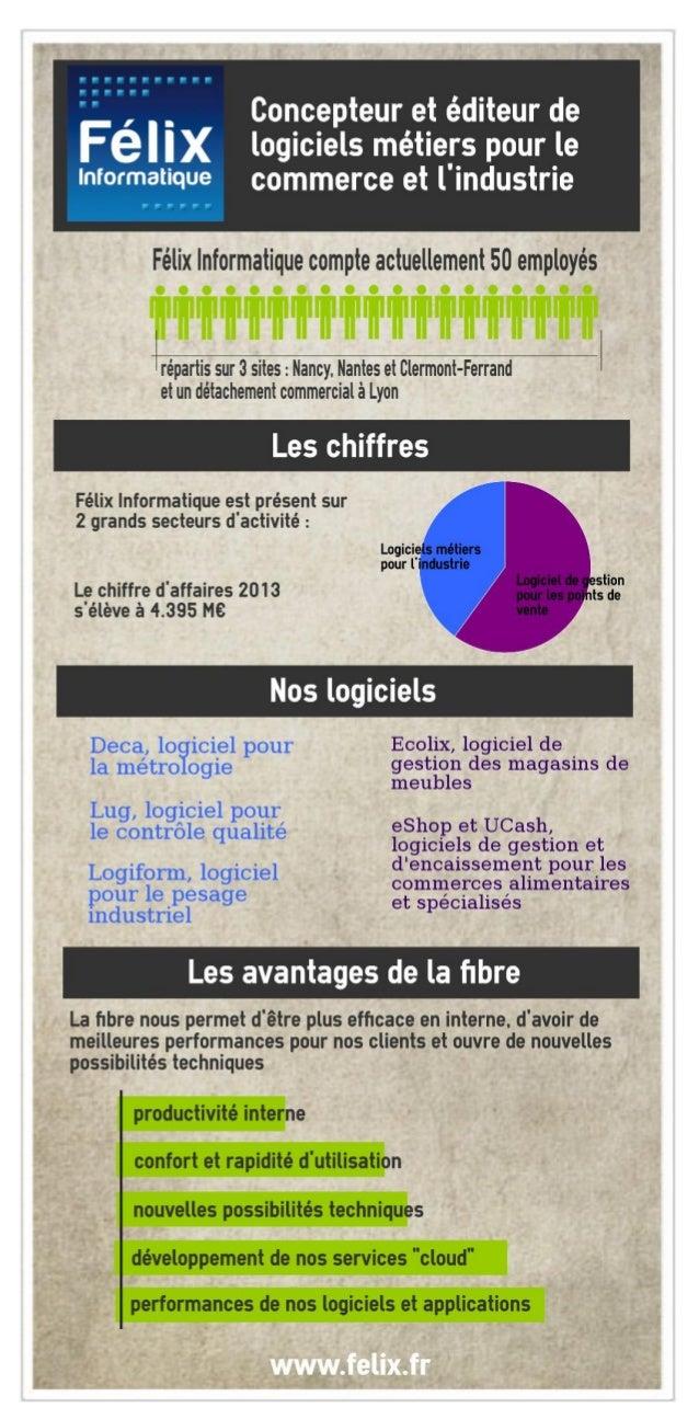 Infographie Félix et la fibre optique