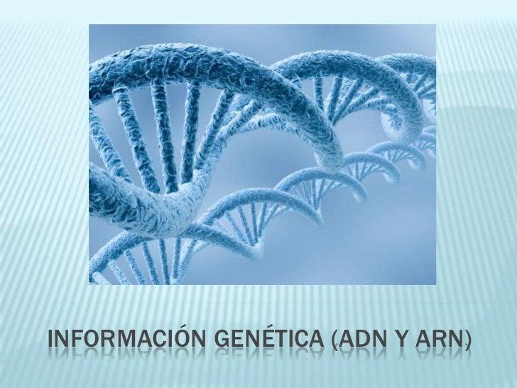 INFORMACIÓN GENÉTICA (adn y arn)<br />