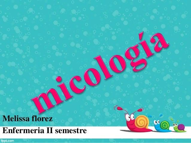 Melissa florez Enfermeria II semestre