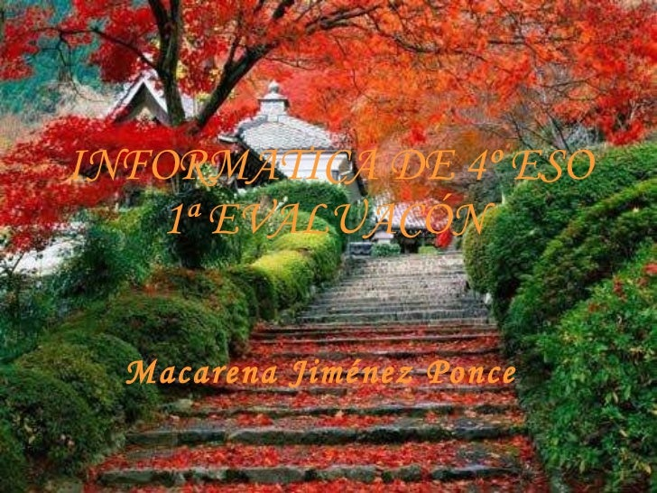 INFORMATICA DE 4º ESO 1ª EVALUACÓN   Macarena Jiménez Ponce