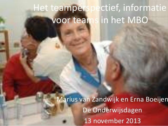 Het teamperspectief, informatie voor teams in het MBO- Marius van Zandwijk en Erna Boeijen- OWD13