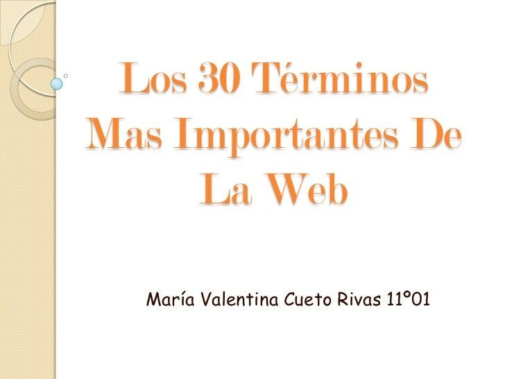Los 30 TérminosMas Importantes De     La Web  María Valentina Cueto Rivas 11º01